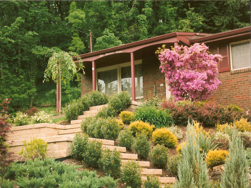 mccandless   landscaping, walls, pavers, mowing, concrete, Natural flower
